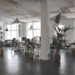 A well-designed open concept office that exudes subtle style.